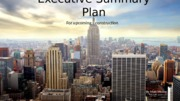 Executive Summary Plan