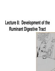 Lecture 8.  Development of the Ruminant Digestive Tract for pdf