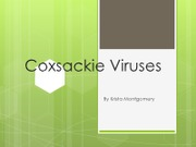 Coxsackie Viruses -by Krista Montgomery final