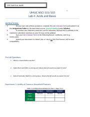 Lab-4-Report-Form