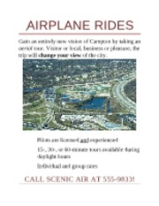 Airplane Rides Flyer