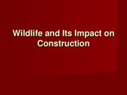 Endangered-Wildlife-Lecture