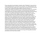 African american civil rights essay questions
