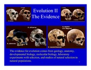 Lecture Notes Evidence for Evolution