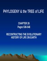 Ch 26 PHYLOGENY & SYSTEMATICS CWeb.pptx