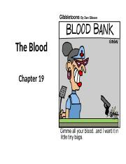 Chapter 19 Blood lecture STUDENT