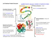 Chapter 5 protein structure review