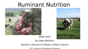 Ruminant Nutrition lecture 1 2015 Handouts