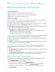 science-skills-worksheet-answer-key.doc - Science Skills Packet ...