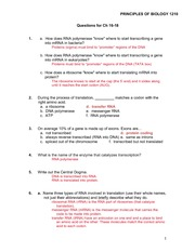 Photosynthesis Worksheet With Answers: Photosynthesis worksheet Answers   Names PRINCIPLES OF BIOLOGY    ,