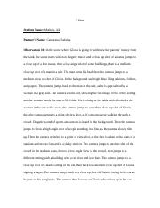 7 Dias Film Observations.docx