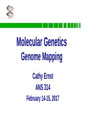 03.2+Molecular+Genetics+Mapping+ANS314+Sp2017