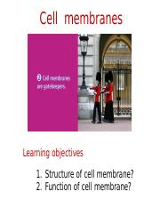 cell membranesS17ecampus.ppt