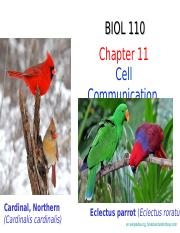Chapter 11 - Communication-NYIT.ppt