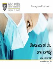 CCBS4 Diseases of the Oral Cavity Summer 17