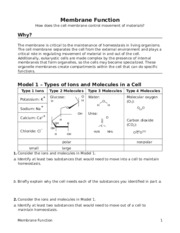 Copy of 5 Membrane Function-S