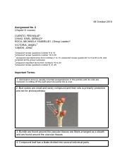 Assignment 2 LEAVES 24 (Botany) .pdf