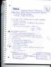 Student Generated Chapter Six Notes