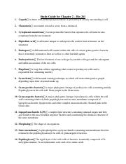 Chapter 2 - Study Guide