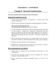 Lab Protocol - Bacterial Transformation sum17-2
