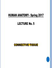 Lecture 5.+Connective+Tissue