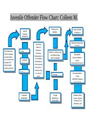juvenile justice flow chart essay Law enforcement's leadership role in juvenile justice reform actionable recommendations for practice & policy july 2014 iacp national summit on.