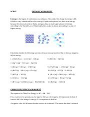 Gibbs Free Energy and Entropy Worksheet.docx