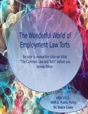 The Wonderful World of Employment Law Torts.pptx