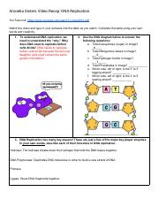 Copy of Amoeba Sisters DNA Replication Video WKST.pdf ...