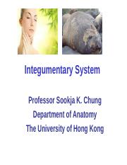 L43 - Anatomy of integumentary system (Prof. SK Chung) [20161109].ppt