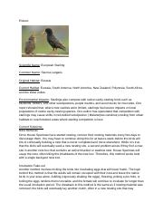 Invasive species project.docx