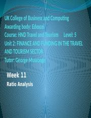 Financial Ratio analysis 11
