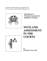 wetland assessment
