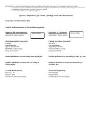 prokaryote resume comparison, include viruses.docx