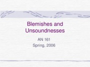 Blemishes and Unsoundnesses