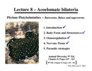 Lecture_8_-_Platyhelminthes_-_041011