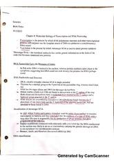 tulane essay questions 2013