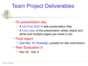 Information+about+Team+Project+Presentation+and+Final+Report