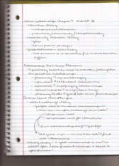 interpersonal attraction class notes