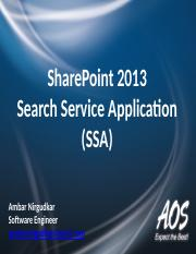 SP 2013 Search Service Application
