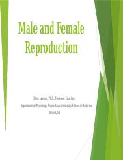 Chapter 27 & 28 (Male and Female Reproduction).pptx