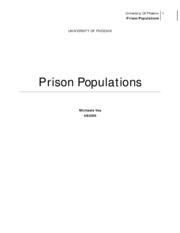 Check point-Prison Populations