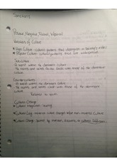 cultural sanctions and cultural analysis notes