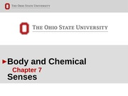 6 Body and Chemical Senses