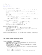 worksheet5mp