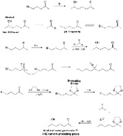 Protecting Group Synthesis-small-22
