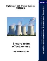 14_08_13_11_19_08Ensure team effectiveness BSBWOR502B Notes.pdf