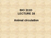 Lecture 16 animal circulation posted