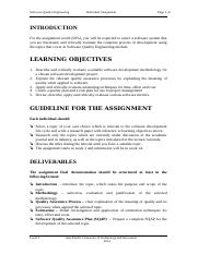 Individual Assignment  Level 3  SQE