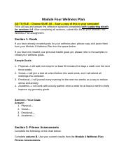 module_four_wellness_plan(1) (1).pdf